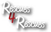 Rescues 4 Rescues